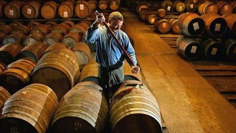 Why you should never drink whisky on the rocks   Food for Foodies   Scoop.it