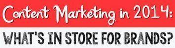Marketing de contenu : les prévisions pour 2014 [Infographie] | ARTS, design, dessin, inspiration, tendances, BD, illustration, photographie | Scoop.it
