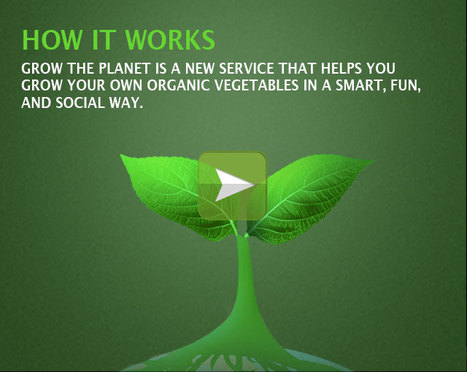 Grow the planet - It's time to grow up and make a better world. | Diventa editore di te stesso | Scoop.it