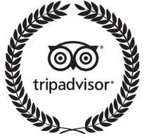 On vous l'avait dit: on se sort plus de TripAdvisor pour effectuer sa réservation d'hôtel | Marketing Hôtelier | Scoop.it