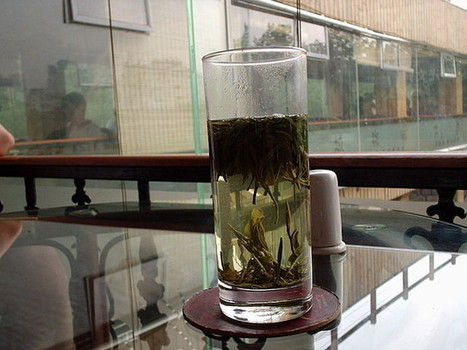 Drinking green tea before taking supplements may offer protection from toxicity. | A Tale of Two Medicines | Scoop.it