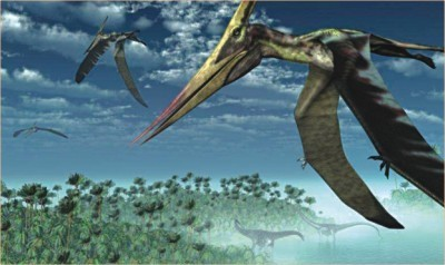 Tale of the flying reptile | Skylarkers | Scoop.it