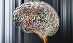 Behavioural tracking and neuroscience are tools for sustainable innovation | Life etc. | Scoop.it