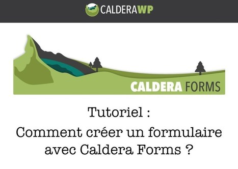 Comment créer un formulaire de contact avec Caldera Forms ? | WordPress France | Scoop.it