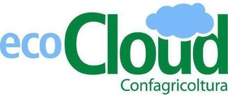 EcoCloud, la nuvola dell'agricoltura sostenibile | Cinzia Zugolaro - sferalab | Scoop.it