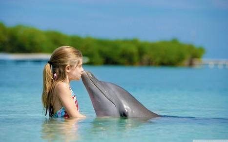 En güzel aşk fotoğraflarıAşka Sözler Aşk Mesajları | Güzel Aşk Sevgi Sözleri | askasozler | Scoop.it
