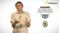 Les conséquences de la disparition des abeilles | EntomoScience | Scoop.it