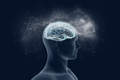 """How the brain produces consciousness in """"time slices"""" 