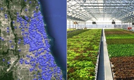 This City Is Home to 820 Urban Farms and Quickly Becoming America's Urban Ag Capital | jardins partagés | Scoop.it