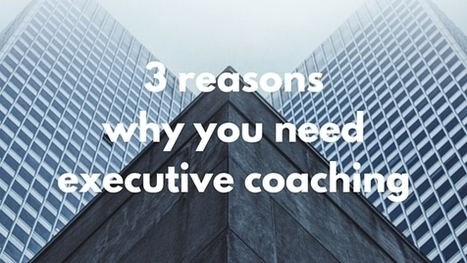 3 Reasons Why You Need Executive Coaching   Leadership and Management Development in Business   Scoop.it
