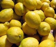 Santé : gare aux citrons non bio   Toxique, soyons vigilant !   Scoop.it