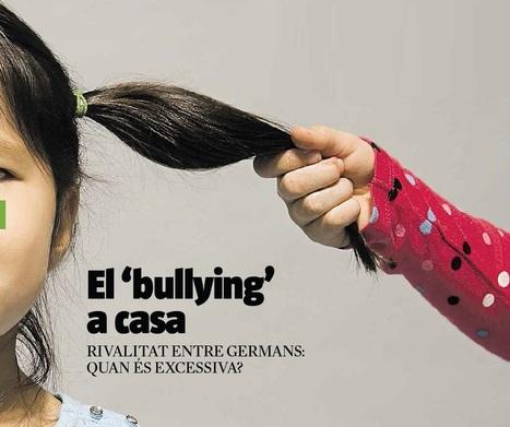 Bullying a casa, quan és excessiva la rivalitat entre germans? | Escola i Educació 2.0 | Scoop.it