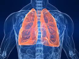 Acupuncture for chronic asthma - The Cochrane Library - McCarney - Wiley Online Library | Acupuncture and the respiratory system | Scoop.it