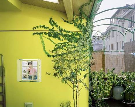 Questa non è una finestra, è un'opera d'#arte.   Socialart   Scoop.it