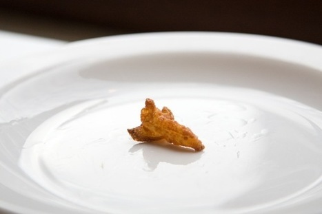 Feeding the Final Frontier: 3-D Printers Could Make Astronaut Meals   Weird Science   Scoop.it