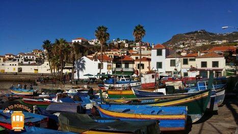 Visite de Câmara de Lobos et du Cabo Girão à Madère | Visiter le Portugal | Scoop.it