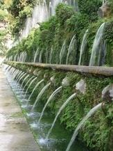Migliorare il terreno: l'uso del concime   Progettazione e manutenzione giardini   Scoop.it