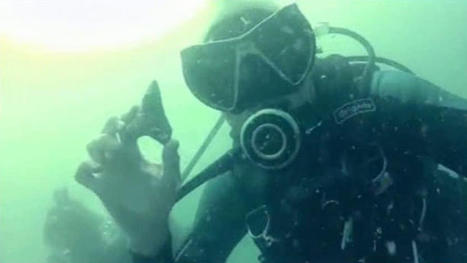 Teachers on Dive for Megalodon Teeth Also Find WWII Plane Wreck - NBC 5 Dallas-Fort Worth   DiverSync   Scoop.it