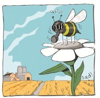 Les oies et les abeilles au parloir ! - Denis Cheissoux - site des JNE | Abeilles, intoxications et informations | Scoop.it