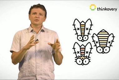Comment vit une ruche d'abeilles domestiques | EntomoScience | Scoop.it