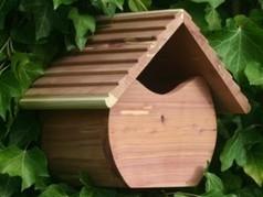 Soin et maison pour oiseaux | annimalice | Scoop.it