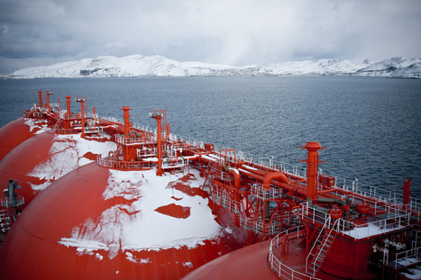 Green groups sue Norwegian government to block Arctic oil   Climate Home - climate change news   The Arctic Circle   Scoop.it