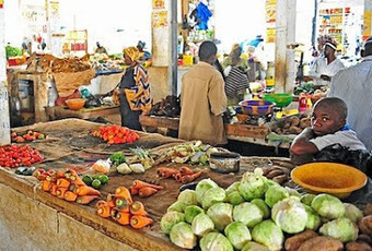 Timbuktu Chronicles: Senegal: Developing Urban Agriculture | Community Support Agriculture | Scoop.it