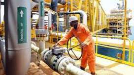 Nigeria's NNPC 'failed to pay' $16bn in oil revenues | Development Economics | Scoop.it