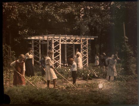 Children cultivating garden | Photography Now | Scoop.it