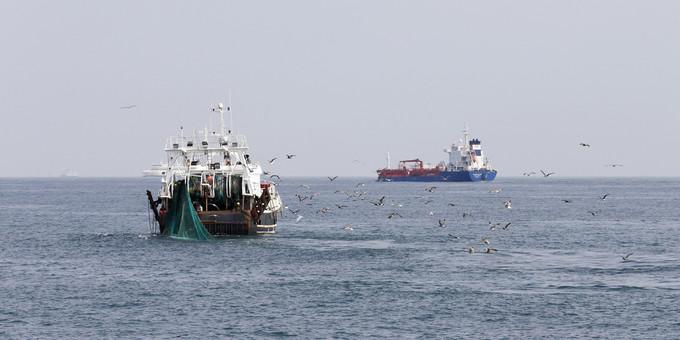 L'Union européenne interdit la pêche en eaux profondes
