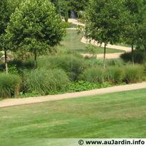 La pelouse en 15 questions : semis en mars | Côté Jardin | Scoop.it