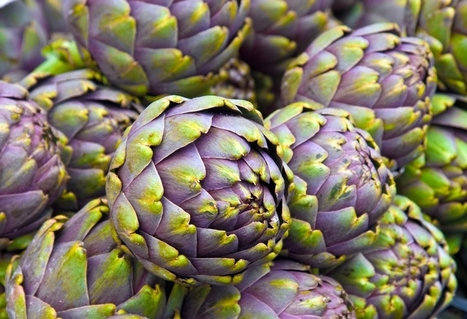 (EN) - Artichokes to zucchinis: a vegetarian alphabet | Simon Thomas | Medical Interpreter Training | Scoop.it