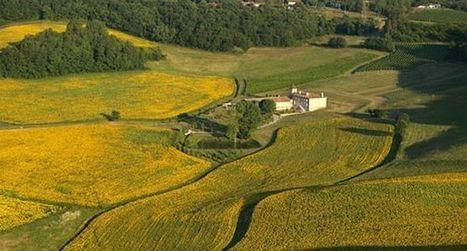 Journée européenne de l'oenotourisme | Le Vin et + encore | Scoop.it