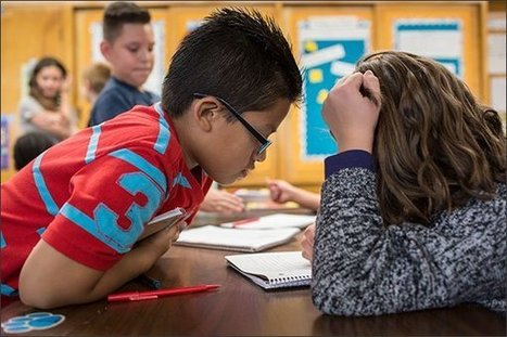 Searching for Clarity on Formative Assessment | Leading Schools | Scoop.it