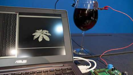 INTEL HAS MADE A PROCESSOR THAT'S POWERED BY WINE | FOOD COSMOS eDIGEST | Scoop.it