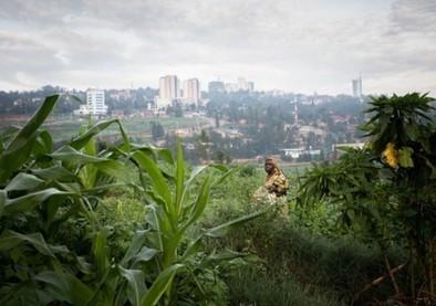 Une université pas comme les autres au Rwanda - Rue89 | Elearning, pédagogie, technologie et numérique... | Scoop.it