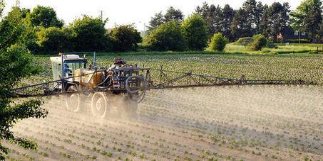 Recul des pesticides : les calculs biaisés du gouvernement | La Certification Phytosanitaire | Scoop.it
