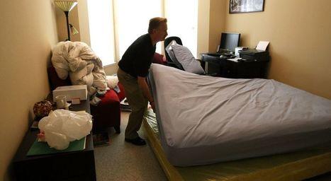 Marseille. Invasion de punaises de lit : que faire pour s'en débarrasser ? | Variétés entomologiques | Scoop.it