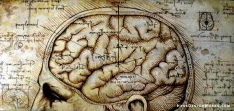 4 Essential (and Overlooked) Facts About Your Brain and Your Mind | Learning, Brain & Cognitive Fitness | Scoop.it
