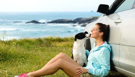 Dog Travel Tips: How to Vacay With Your Pet | Top Dog Tips | Dog Lovers | Scoop.it