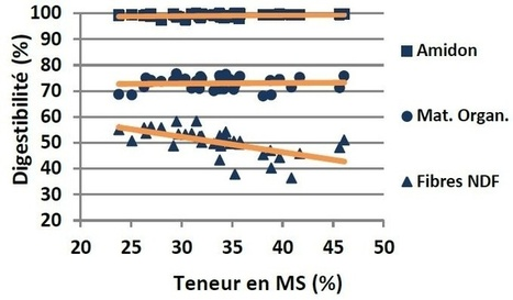 Digestibilité de l'ensilage de maïs Plus le maïs est sec, plus il faut le complémenter avec de la fibre | Agriculture | Scoop.it