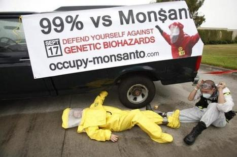 Monsanto versus the people | YOUR FOOD, YOUR ENVIRONMENT, YOUR HEALTH: #Biotech #GMOs #Pesticides #Chemicals #FactoryFarms #CAFOs #BigFood | Scoop.it