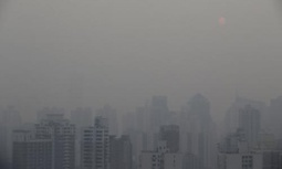 """China's coal imports fall nearly half in 12 mo. as anti-pollution drive bites (""""someone's listening"""") 