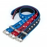 personalized leather dog collars and leads - Your Critter Sitter | I like this stuff | Scoop.it