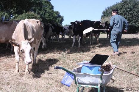 Mortagne-au-Perche. Le malaise agricole sur les planches | Le Mag ornais.fr | Scoop.it