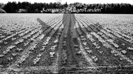 Guerilla und Urban Gardening - Der Aufmarsch der Monokulturen - The Intelligence | urbanism and urban governance | Scoop.it