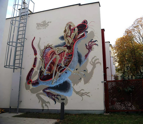 "Nychos ""Anatomy of a Snakebait / Rat"" New Street Art - Vienna, Austria 