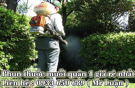 Phun thuốc diệt muỗi quận 1, giá rẻ, uy tín. LH: 0933650689   Dịch  vụ diệt côn trùng   Scoop.it