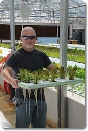 Organically certified aquaponics in Tennessee | Cultivos Hidropónicos | Scoop.it