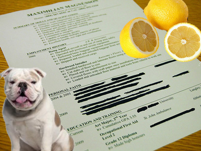 The 15 Wackiest Things People Have Listed on Their Resumes | Teaching Business Communication and Employment | Scoop.it
